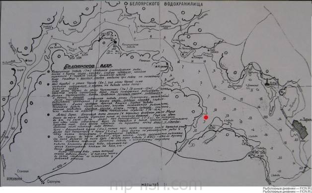 прогноз клева волчихинское водохранилище